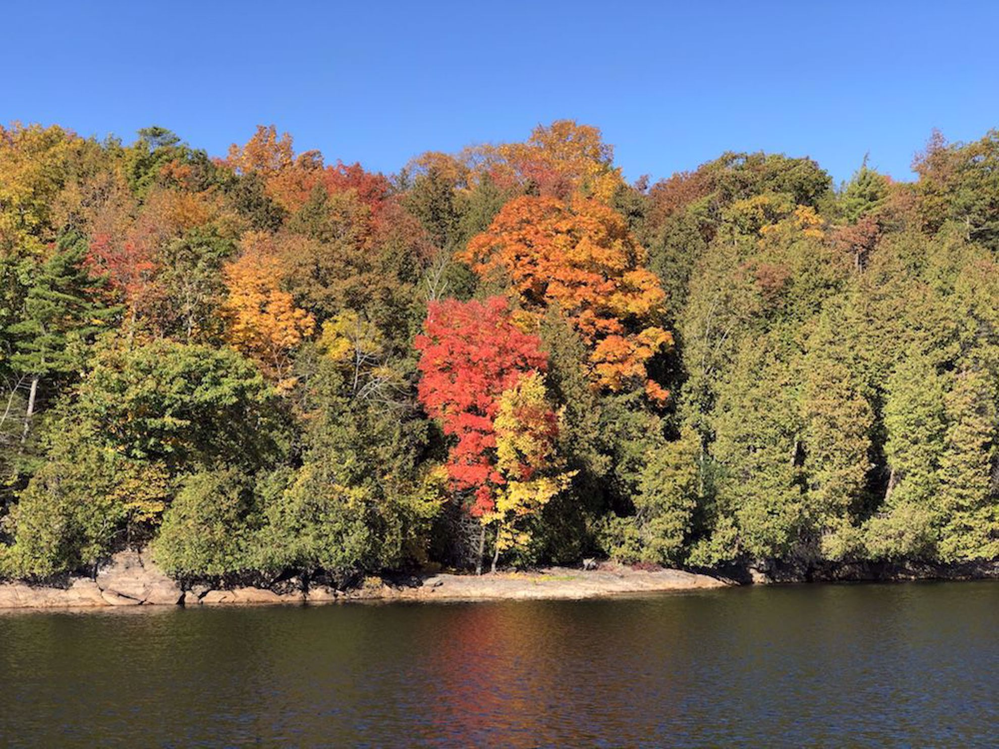 Fall colors on Lake Champlain