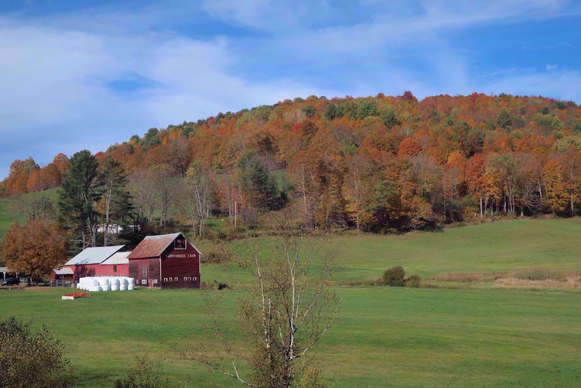 Fall colors near Woodstock