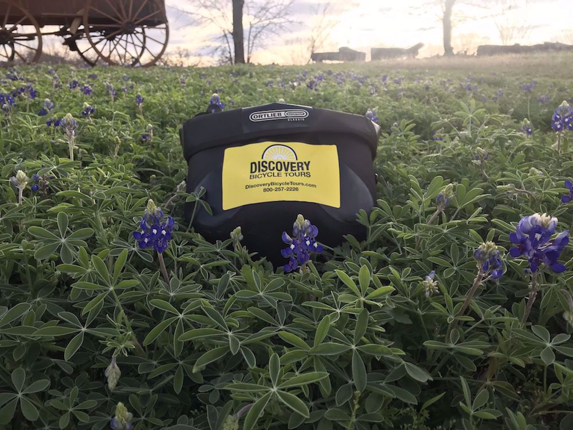 Bluebonnets, bike bag and covered wagon