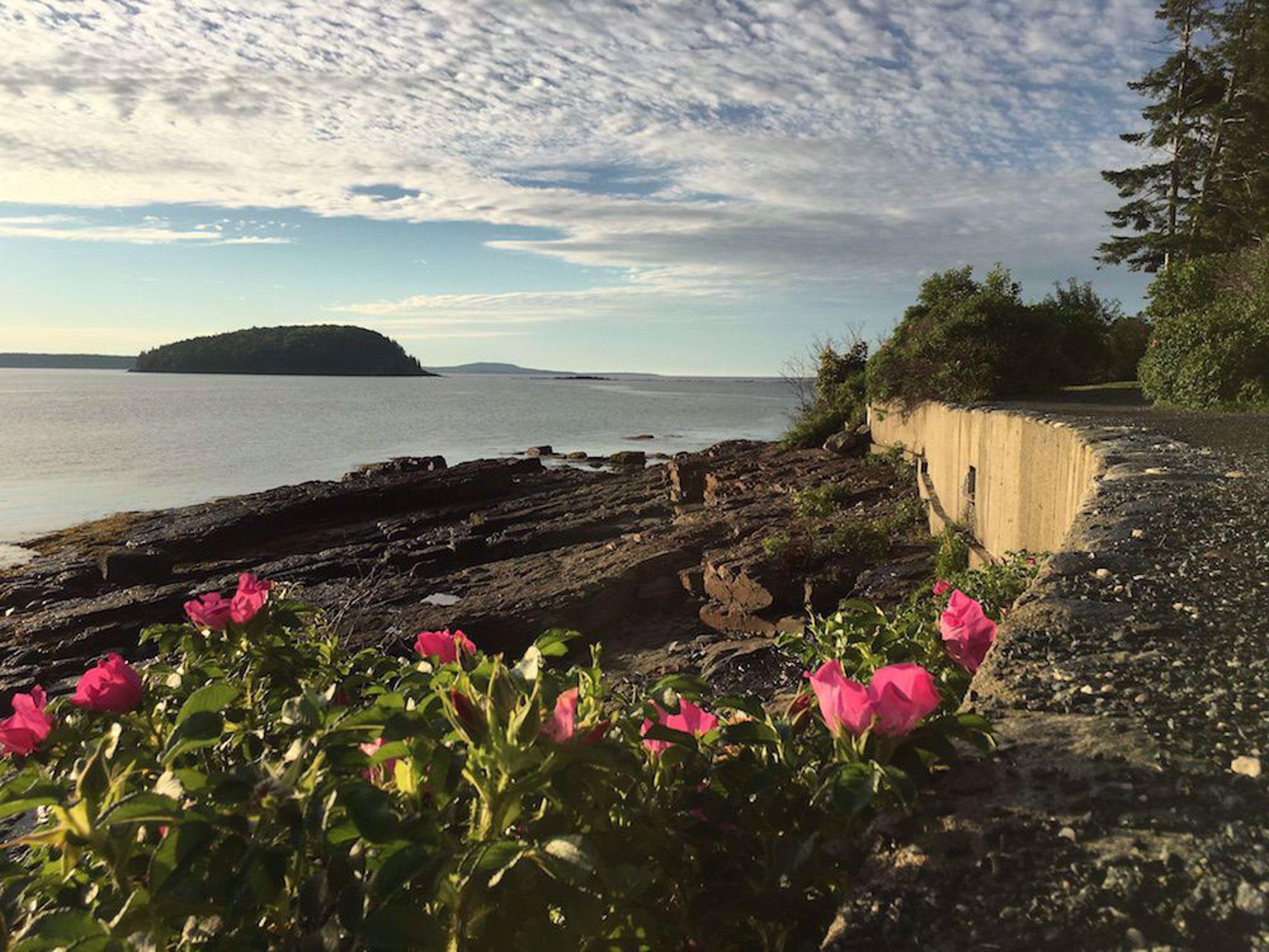 Bar Harbor Maine shoreline