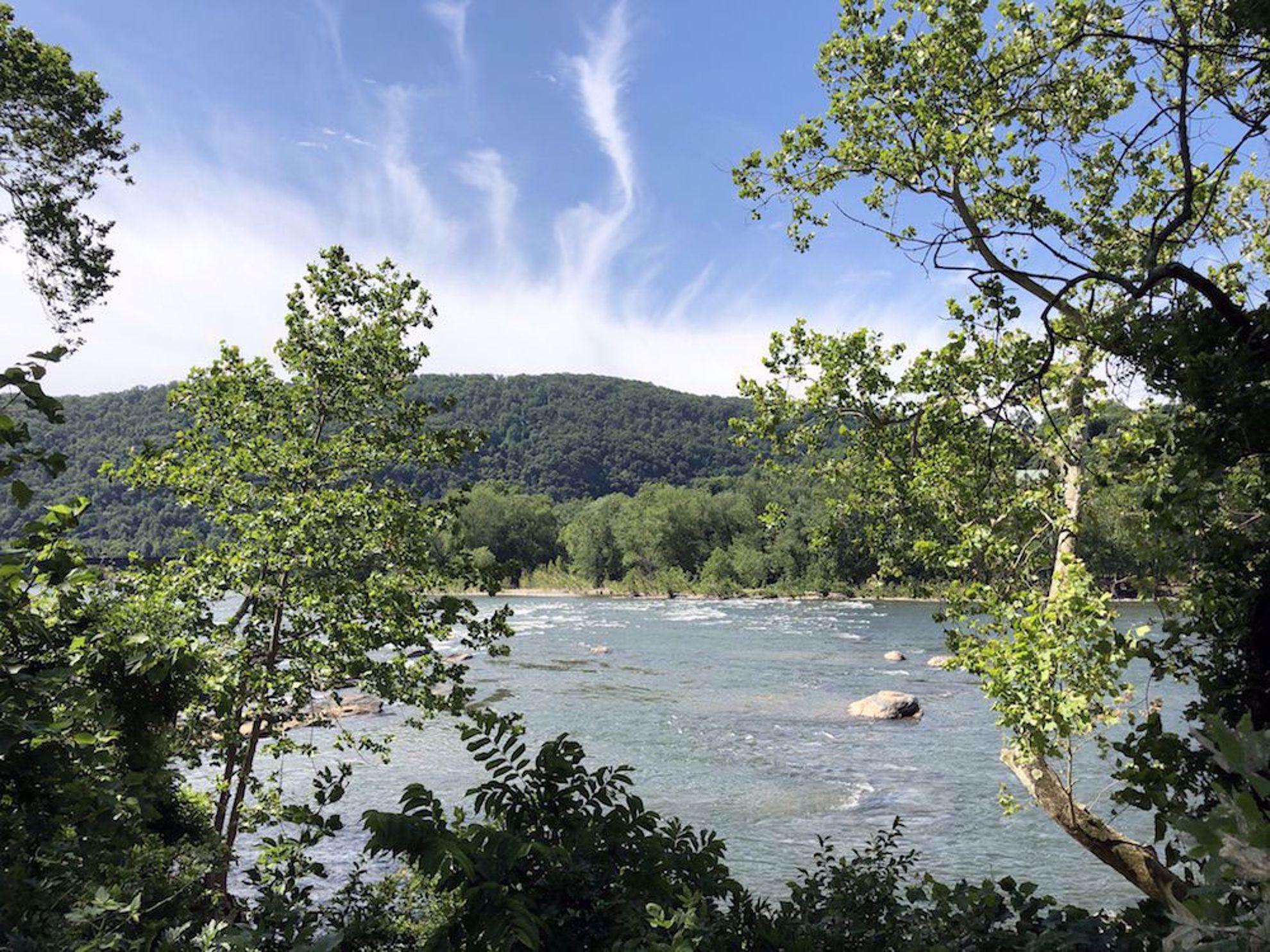 Potomac River view