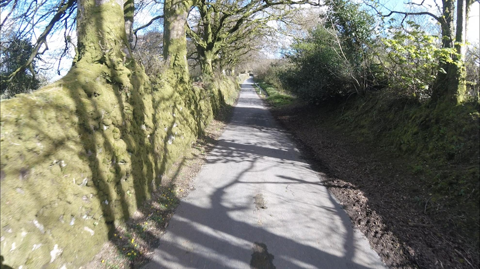 Bike path Cornwall