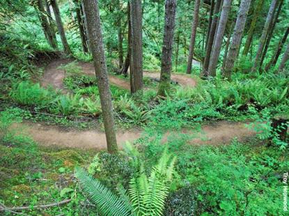 Mountain trails 2 Troy Hopwood