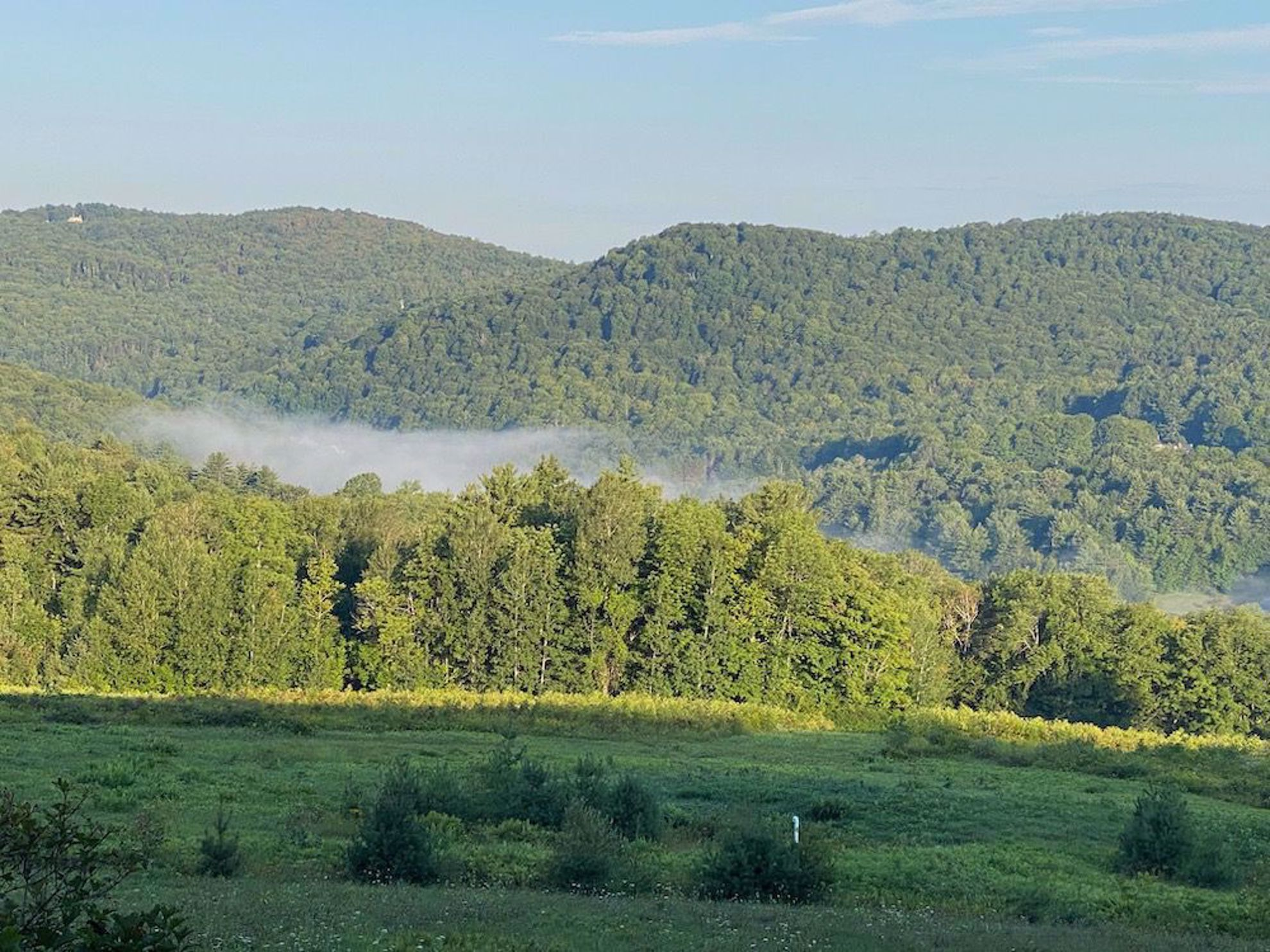mist on the Green Mountains