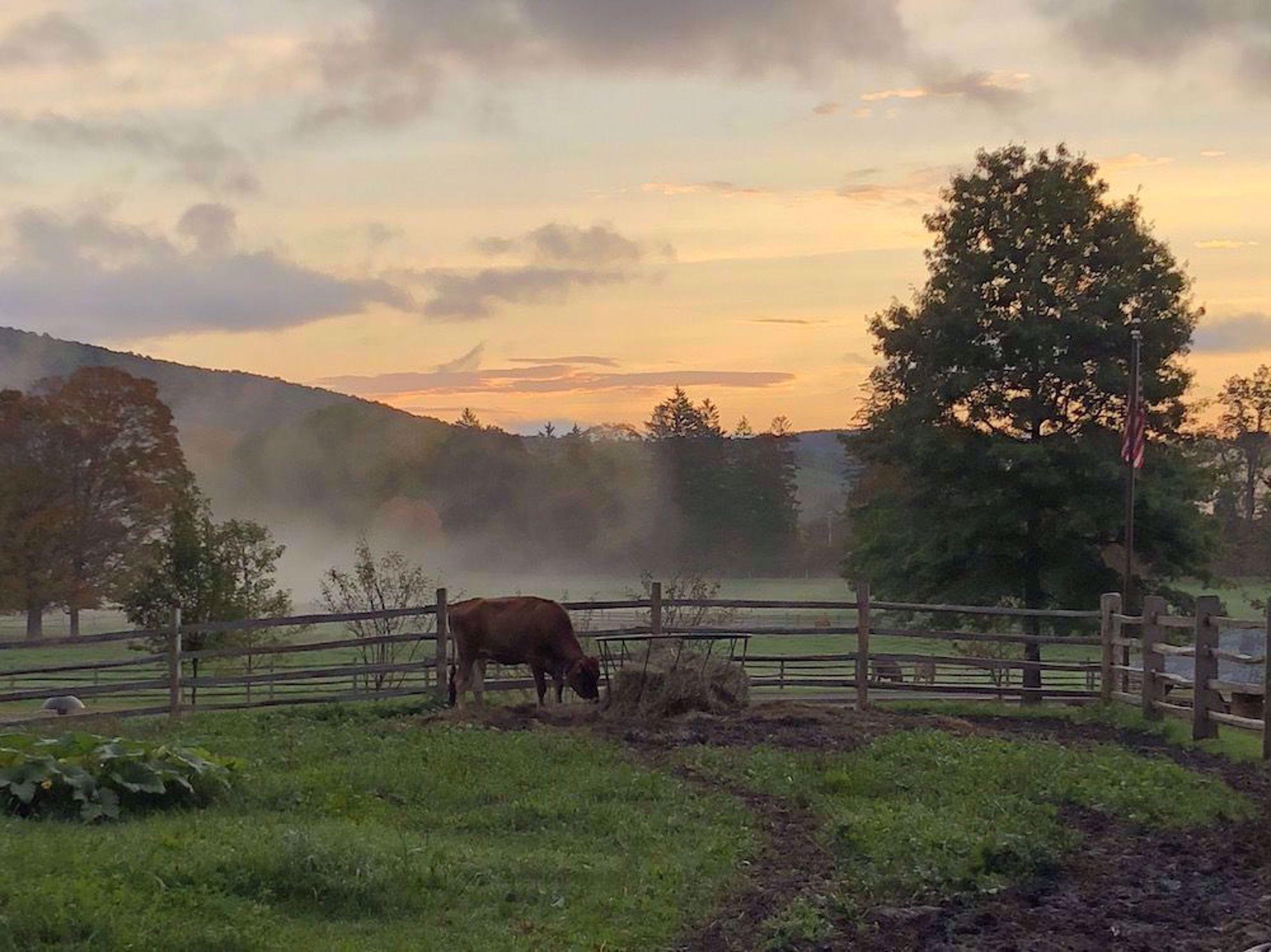 Billings Farm in Woodstock
