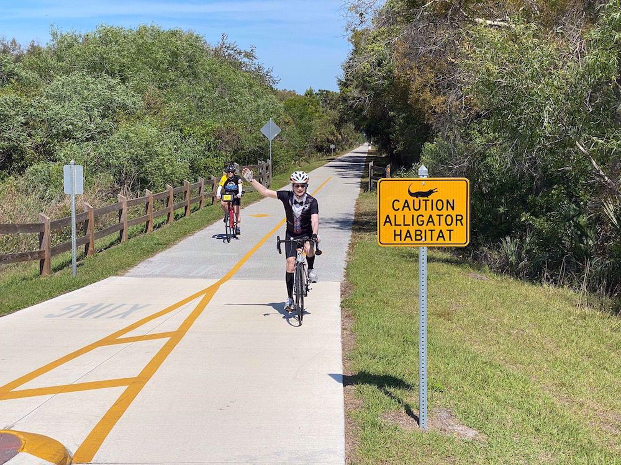 Alligator sign on trail